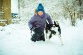 Little boy with Husky dog — Foto de Stock