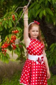 Girl in a  dress in cherry garden — Stock Photo