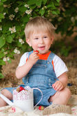 Little boy in the summer with strawberries — Stock Photo