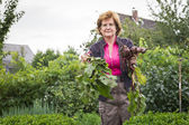 Woman harvesting self grown vegetables — Stock Photo