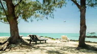 Sunchairs on beach — Stock Video