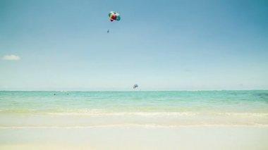 Parasailer on beach — Stock Video