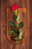 Rose on the boards — Stock Photo