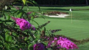 Empty golf course — Wideo stockowe