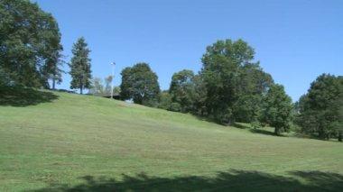Met gras begroeide heuvel met bomen — Stockvideo