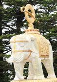 Buddha elephant on top of emei mountain — Stock Photo