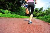 Runner athlete running on forest trail. — Stockfoto