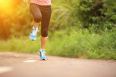 Oung fitness woman legs running at forest trail — Stock Photo