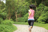 Young fitness woman running at forest trail — Zdjęcie stockowe