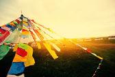 Buddhist Tibetan prayer flags waving in the wind morning — Stockfoto