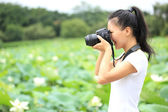 Young woman photographer taking photo of blooming lotus at park — Stock Photo