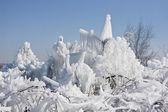 Zimowe naturalne tło — Zdjęcie stockowe