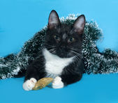 Black and white Cat in Christmas tinsel lies on blue — Stock Photo