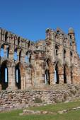 Whitby Abbey Yorkshire Uk — Stockfoto