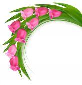 Γιορτή φόντο με ροζ λουλούδια. Διάνυσμα. — Διανυσματικό Αρχείο