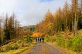 Group of people walking in Scottish Highlands — Stock Photo