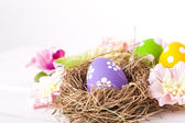 Easter eggs in a birds nest — Stock Photo