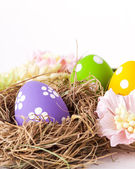 Colorful easter eggs with white points — Stock Photo