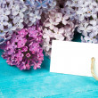 Postcard with splendid lilac flowers — Stock Photo #75482229