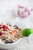 Muesli with yogurt and strawberry — Stockfoto