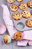 Chocolate chip muffins — Stock Photo