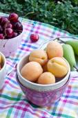 Fruits for picnic close up — Stock Photo