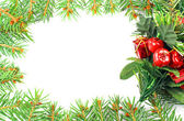 Christmas frame of the branches of spruce on a white background — Stock Photo