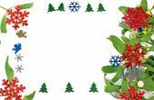 Christmas decoration, mistletoe with berries — Stok fotoğraf