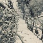 Norwegian winter village — Stock Photo #64033029