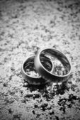 Silver wedding bands — Stock Photo