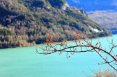Mountains lake in Pyrenees, winter, spring — Stockfoto