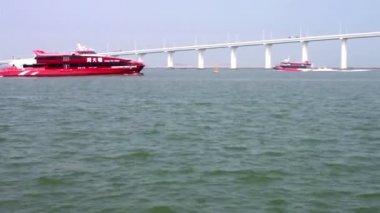 Macau - 20 October 2013: Jetfoils entering and leaving Macau to Hong Kong — Stock Video