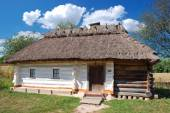 Traditional Ukrainian hut — Stock Photo