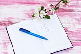 Ramitos de flores de manzano con un cuaderno y lápiz — Foto de Stock