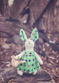 Soft toy - bunny sitting on an old tree. toned photo — Stock Photo