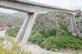 New road bridge over the Gouritz River — Stock Photo