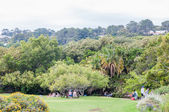 People at the Kirstenbosch National Botanical Gardens — Stock Photo