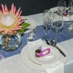 Single protea flower display — Stock Photo #75679675