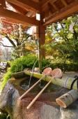 日本神社净化盆地 — 图库照片
