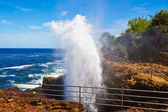 Blow hole — Stock Photo