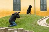 Animal photographer at work — Stock Photo