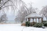 Frusna vinterlandskapet — Stockfoto
