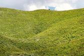 Prado alpes — Foto de Stock