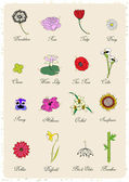 Set of vintage flowers — Stock Vector