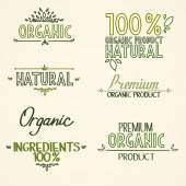 Organic health food headings natural product nature-themed badges and labels with green leaves hand draw handwritten text — Cтоковый вектор