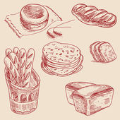 Bakery products hand drawn sketch different kinds bread — Stockvector