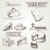 Hand drawn doodle sketch cheese with different premium quality types of cheeses in retro style stylized — Stock Vector