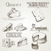 Queijo de esboço doodle desenhado com diferentes prémio qualidade tipos de queijos em estilo retro estilizada de mão — Vetor de Stock