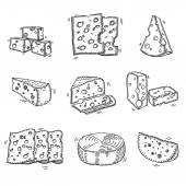 Hand drawn doodle sketch cheese with different types of cheeses in retro style stylized — Stock Vector