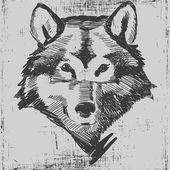 Wolf head hand drawn sketch grunge texture engraving style — Vector de stock